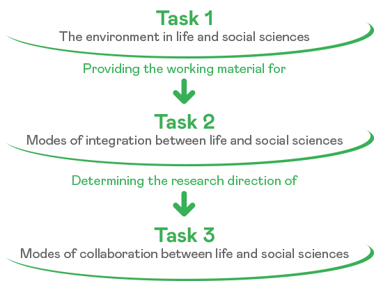 task 1 - task 2 - task 3